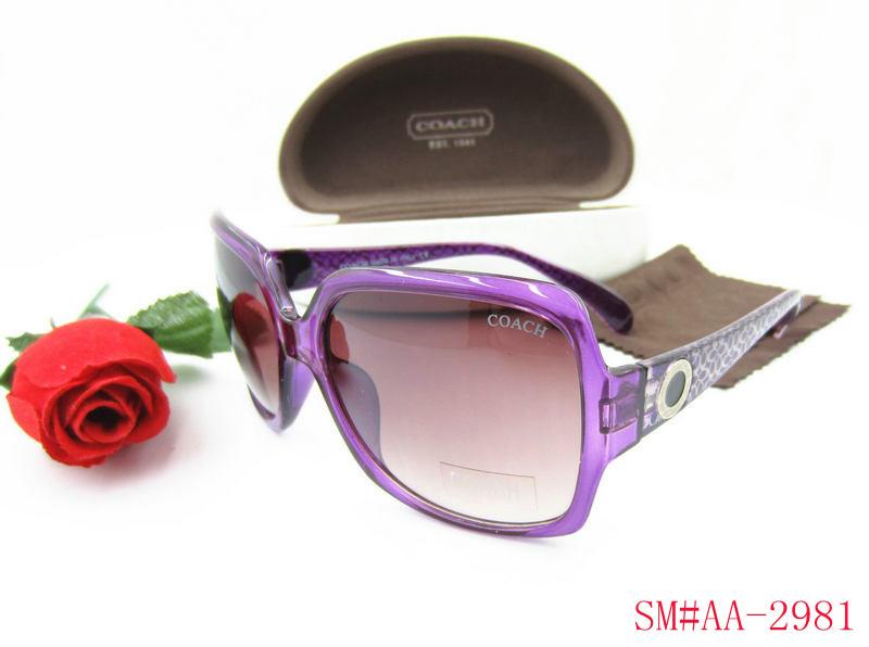 107d9f4f456 coach lunettes de soleil acheter 2013 lentille genereux ma9801 - EUR ...